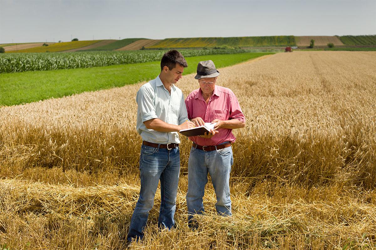 Aziende Agricole e Agrituristiche
